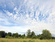 Lithuanian summer landscape Stock Photo