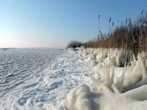 Lithuanian winter landscape Stock Photos