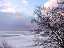 Lithuanian winter landscape Royalty Free Stock Image