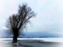 Lithuanian winter landscape Stock Photo