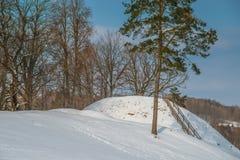 Lithuanian winter. Mound Buivydu piliakalnis Stock Images