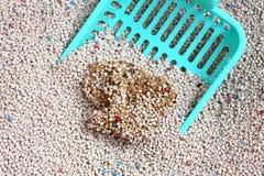 Litière du chat avec l'épuisette de sable de chat Images stock