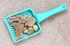 Litière du chat avec l'épuisette de sable de chat Images libres de droits