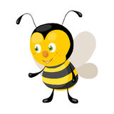 Litle bee royalty free stock photos