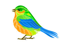 Litle birdie. Vector illustration eps 8  without gradients Royalty Free Stock Photo