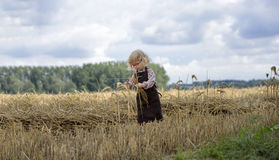 Litle gilr playin in a wheat field Royalty Free Stock Photo
