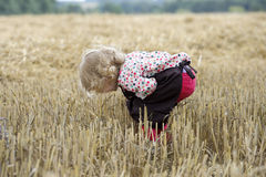 Litle gilr playin in a wheat field Stock Photography