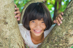 Litle girl smile happy on tree Royalty Free Stock Images