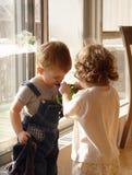 Litle Mädchen hilft seinem Freund Stockfotografie