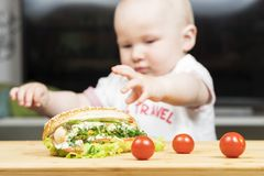 Litlle婴儿白种人男孩设法窃取一根不健康的可口热狗用从桌的蔬菜沙拉 库存照片