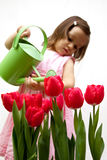 Litlle girl droping a bouqet of red tulip Stock Images