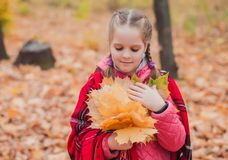 Litltle girl with woolen blanket on the soulders in the autumn park/ royalty free stock photos