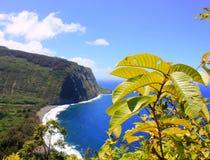 Litoral áspero Havaí maui imagens de stock