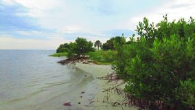 litoral almacen de metraje de vídeo