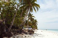 Litoral bonito, opinião de turquesa do mar com palmeiras, Imagens de Stock