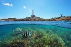 Litoral com um farol em Cabo de Palos na Espanha e fundo do mar gramíneo com peixes debaixo d'água imagem de stock