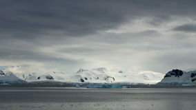 Litoral da Antártica video estoque