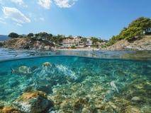 Litoral da Espanha com peixes Llanca subaquático imagens de stock royalty free