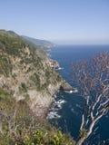 Litoral de Cinque Terre fotografia de stock