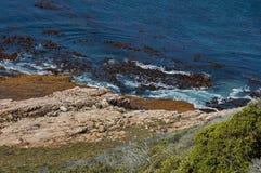 Litoral de Oceano Atlântico pelo cabo da boa esperança Respingo da onda das rochas fotografia de stock royalty free