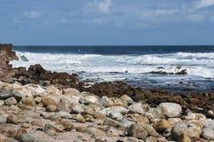 Litoral de Oceano Atlântico pelo cabo da boa esperança Voo de cormorantocks do cabo imagem de stock