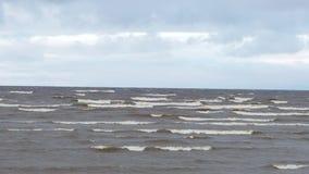 Litoral do mar com ondas e pássaro de voo nas nuvens vídeo Respingo marinho das ondas na praia vulcânica da areia calmo vídeos de arquivo
