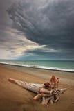 Litoral do mar de japão Fotografia de Stock Royalty Free