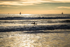 Litoral do oceano Imagens de Stock Royalty Free