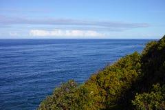 Litoral florestado no porto Macquarie Austrália imagens de stock royalty free