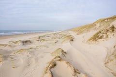 Litoral holandês com as dunas pelo mar de cima de imagens de stock royalty free