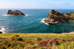 Litoral na costa córnico perto de Boscastle, Cornualha, Inglaterra Fotos de Stock