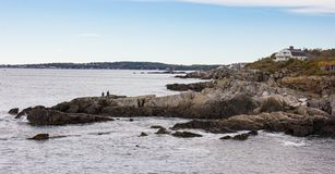 Litoral rochoso de Maine foto de stock royalty free