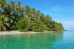 Litoral selvagem da ilha de América Central Panamá imagem de stock