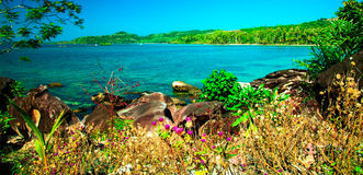 Litoral tropical Fotos de Stock Royalty Free