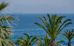 Litoral tropical bonito com palmeiras e ?gua azul clara foto de stock