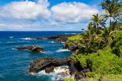 Litoral vulcânico nas costas de Maui Imagem de Stock Royalty Free