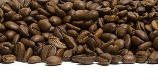 Litorale del caffè Fotografia Stock
