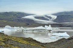 Litorale del lago del ghiacciaio di Fjallsarlon, Islanda Fotografia Stock Libera da Diritti