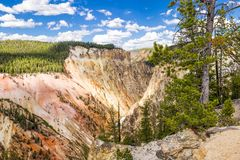 Litorale del lago Yellowstone immagine stock libera da diritti
