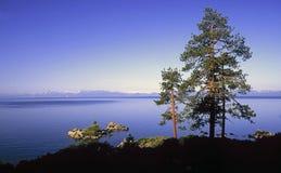 Litorale del Lake Tahoe Immagini Stock Libere da Diritti