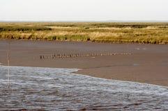 Litorale del Mare del Nord Fotografia Stock
