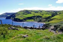 Litorale dell'Antrim in Irlanda del Nord Fotografia Stock
