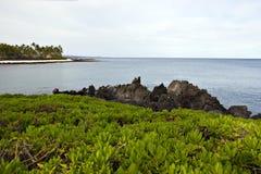 Litorale dell'Hawai dell'isola di Kona Fotografia Stock