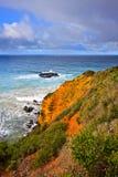 Litorale dell'oceano, grande strada dell'oceano Fotografia Stock Libera da Diritti