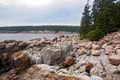 Litorale dentellare del granito della sosta nazionale di Acadia fotografia stock