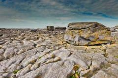 Litorale di Berren, Irlanda fotografia stock libera da diritti