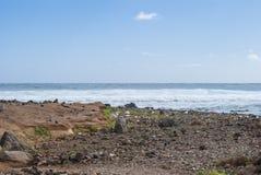 Litorale di Fuerteventura Fotografie Stock