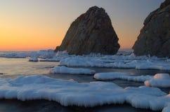 Litorale di mare di inverno. Immagini Stock