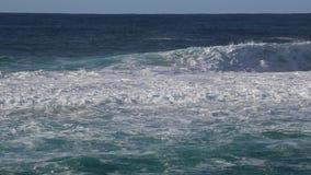 Litorale di Pacifico stock footage