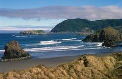 Litorale e litorale dell'Oregon Fotografia Stock